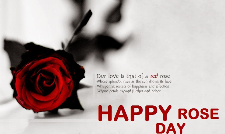 happy rose day wishes messages greetings